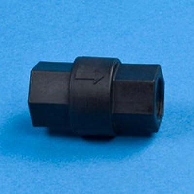 "3/4"" FNPT Polypropylene Check Valve w/FKM Seals & 302 SS Spring by SMC"