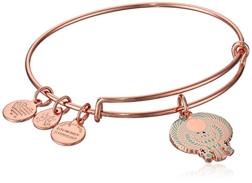 Alex and Ani Womens Falcon EWB Bangle Bracelet, Shiny Rose, Expandable