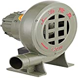 SILOLA Soplador 220V Velocidad Variable ?? Soplador eléctrico de forja para herrería Centrifugadoras Barbacoas Bomba Ventilador Forja de carbón Encendedores para Barbacoa (4 tamaños)