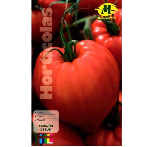Tomate Corazón de Buey 12x19 cm Mascarell Semillas