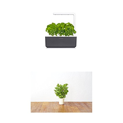Click & Grow Smart Garden 3 jardinière d'intérieur 30 x 10 x 28 cm Gris anthracite (contient 3 capsules de basilic) + 2 recharges menthe (x3)