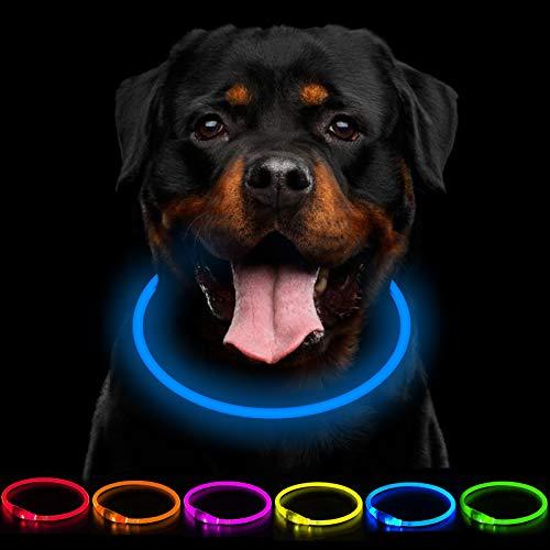 CCWW LED Leuchthalsband Hunde Halsband USB wiederaufladbar - Längenverstellbarer Haustier Sicherheit Kragen für Hunde und Katzen- 3 Modus
