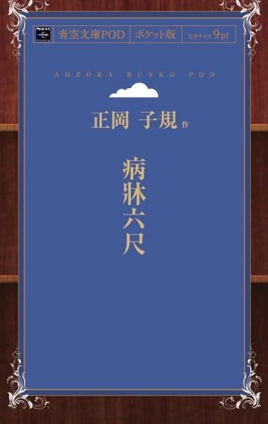 十通り速報病牀六尺 (青空文庫POD(ポケット版))