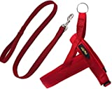 IG Pet Leash, Nylon confortable Respirant Dog Tampon Corde,Vin rouge,S