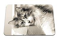 22cmx18cm マウスパッド (毛皮で横たわっている猫) パターンカスタムの マウスパッド