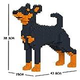 JEKCA Miniature Pinscher 01S-M01