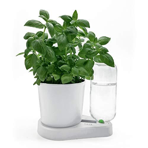 Floris Base - Riego natural para hierbas aromáticas en maceta de flores (blanco)