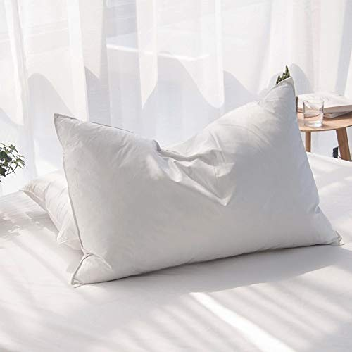 AIKOFUL Luxury Siberian Goose Down Feather Pillows for Sleeping Queen Size Bed Pillows,100% Original Egyptian Cotton 1000 Thread Count (Queen-1 Pillow)