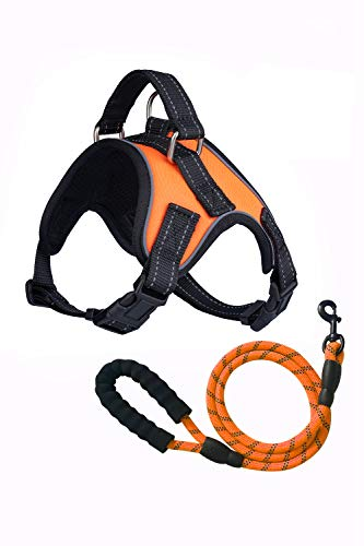 Sean's Store No Pull Dog Harness Leash Combination No Choke Front Lead Dog Reflective Harness, Adjustable Soft Padded Pet Vest with Easy Control Handle for Small to Large Dogs (Orange Vest, Large)
