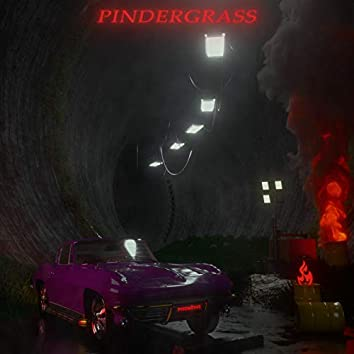 Pindergrass