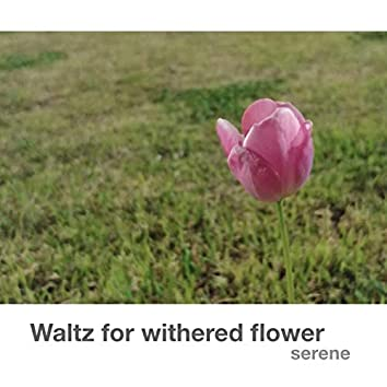 Waltz for withered flower