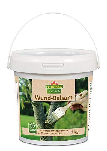Florissa Wund Balsam 1 kg
