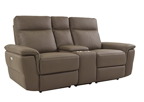Homelegance Olympia Modern Design Power Reclining Loveseat Top Grain Genuine Leather Match, Raisin