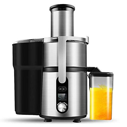 RUCHUFT Entsafter Slow Juicer, Entsafter Gemüse und Obst mit Rücklauffunktion langsam Drehender Entsafter und Saftauffangbehälter und Reinigungsbürste, BPA-frei, Geeignet für Familien, Silver