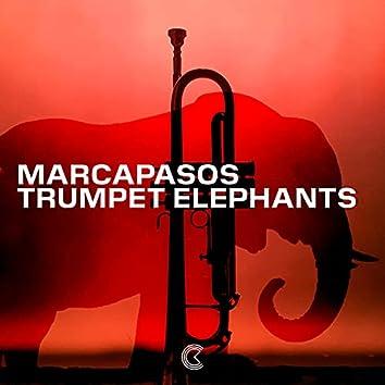 Trumpet Elephants