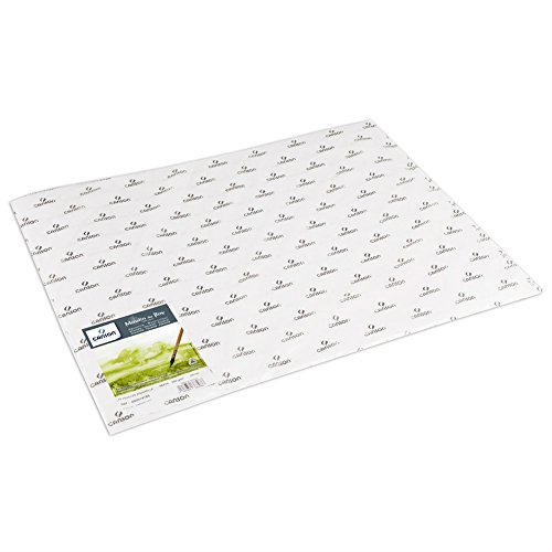 Moulin du Roy 400014785 Canson Watercolor Paper 22'X30' 10 Sheets, White