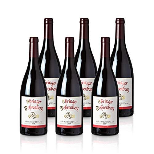 Spätburgunder Barrique - Ihringer Fohrenberg 2017 | Rotwein aus Deutschland | Trocken & Rot | WBK Glatt | Samtig & Kräftig im Geschmack (6x 0,75l)