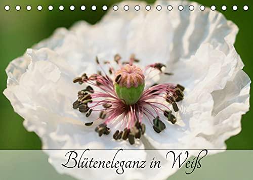 Blüteneleganz in Weiß (Tischkalender 2022 DIN A5 quer)