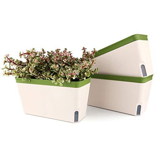 T4U 27cm Selbstwässernder Blumenkasten Kräutertopf mit ERD-Bewässerungs-System Grün 3er-Set Kunststoff Blumentopf Pflanzgefäß Rechteck für Küche Balkon Fensterbank