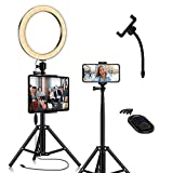 LED Ring Light with Tablet Tripod Stand Kit - 10'' Circle Ringlight with Cell Phone Holeder & Photo Selfie Remote for Tiktok YouTube Video Recording Zoom Meeting Makeup Lighting for iPad iPhone Laptop