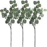 Gshy - Ramas de eucalipto artificial para fiesta, boda, decoración de la casa, 3 unidades