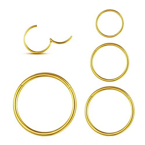 WBRWP 4Pcs 20G(0.8MM) Seamless 316L Stainless-Steel Piercing-Ring Hinged Nose-Rings-Hoop : Womens and Mens Body Pierecing Ring Rook Earrings Diameter 6mm 8mm 10mm 12mm(Each Dia 1 pc) Gold Color