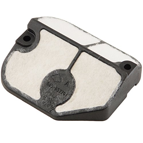 American Yard Products AYP 545057701 Chainsaw Air Filter