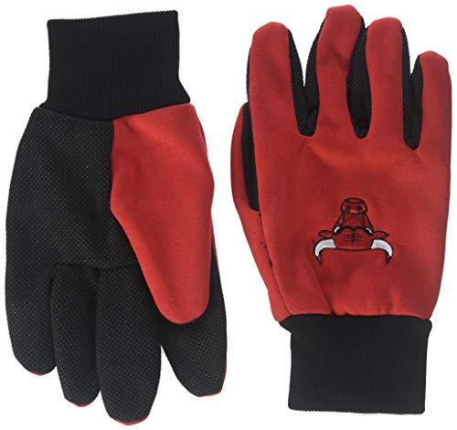 Forever Collectibles NBA farbigen Palm Handschuh, Unisex, GLVWKNB15CBL, Chicago Bulls, Einheitsgröße