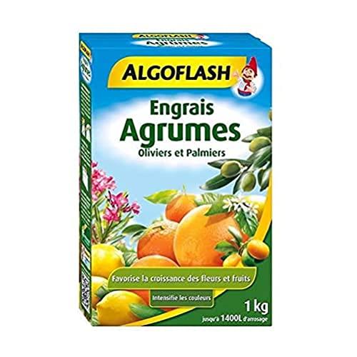 ALGOFLASH Engrais s Agrumes, Oliviers et Palmiers, 1 xkg, MED1N