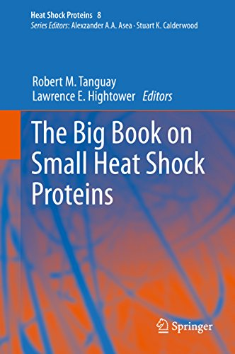 The Big Book on Small Heat Shock Proteins (English Edition)