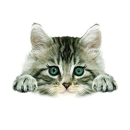 LZHLMCL Parche De Apliques De Chaquetas Parches De Animales De Gato 3D Pegatinas Térmicas En La Ropa Planchado En Transferencias Pegatinas De Transferencia De Calor Para Ropa Camiseta Para Mujer 6