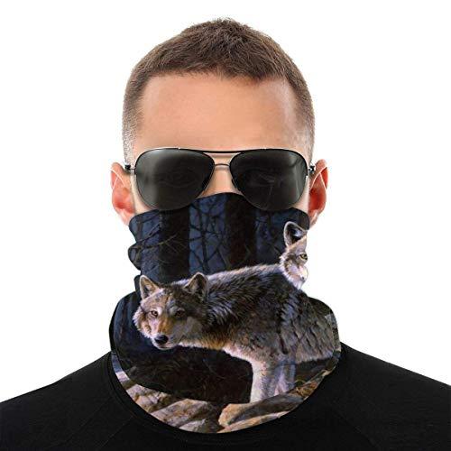Quintion Robeson Forest Riverside Wolf Stirnband Bandanas Magic Headwrap Magic Scarf Sport Kopfbedeckung Magic Scarf für Outdoor Yoga Wandern Reiten Motorradfahren