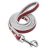 Zzxx Cinturón reflectante para perro pequeño y mediano grande de piel para perro Pitbull entrenamiento caminando cuerda, Rojo, Medium