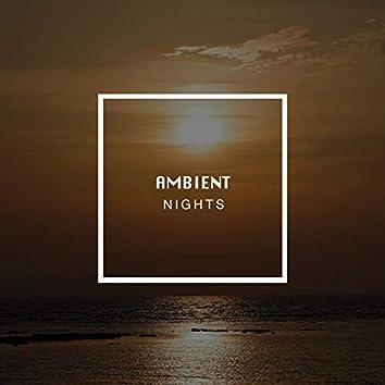 Ambient Nights, Vol. 17