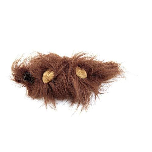 JIE Disfraz de Mascota Peluca de Melena de len para Gato Fiesta de Navidad de Halloween Vestido con Oreja Marrn M