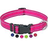 Amazon Brand - Umi - Collar de Perro, Reflectante, Ajustable, Nylon, para Perros pequeños y Grandes, Cachorros y Gatos, en Muchos Colores y Tallas Distintos, Pink Rosa, M