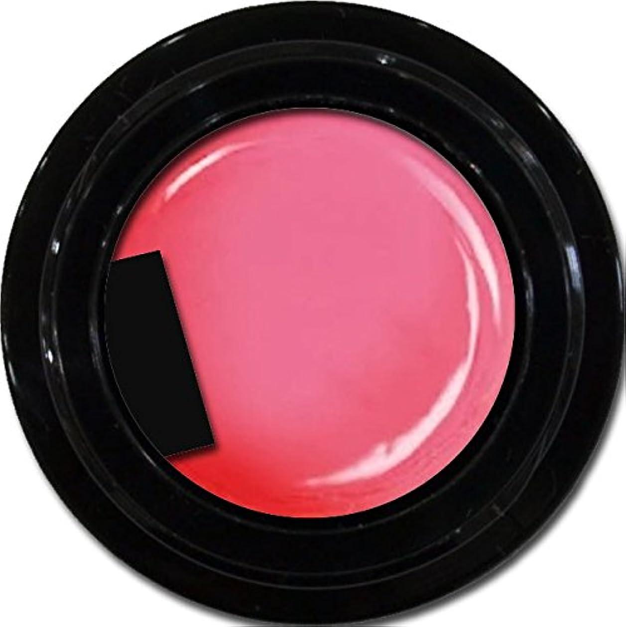 差し迫った型幾分カラージェル enchant color gel M213 MistyPink 3g/ マットカラージェル M213ミスティーピンク 3グラム