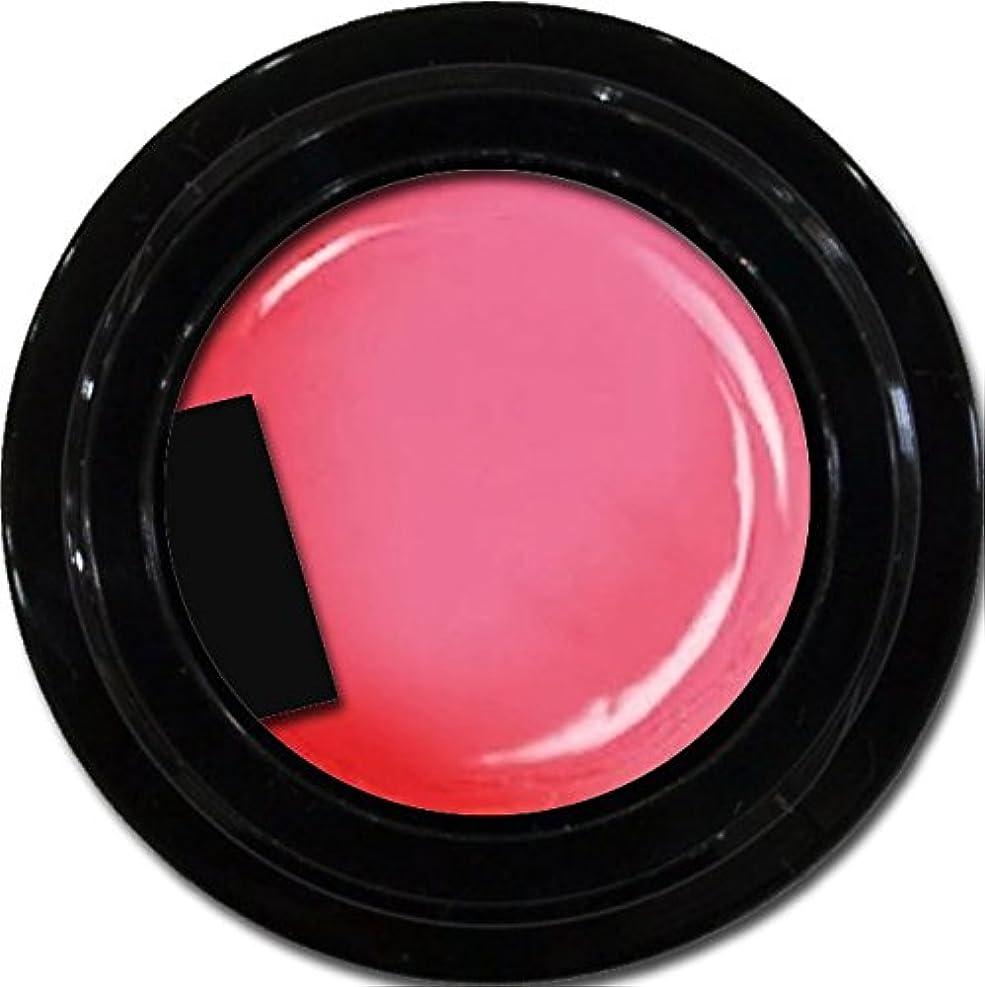 タイムリーな宿内なるカラージェル enchant color gel M213 MistyPink 3g/ マットカラージェル M213ミスティーピンク 3グラム