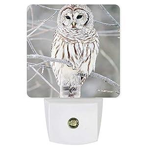 Night Lights Plug Into Wall with Dusk to Dawn Sensor Owl Perch On Tree Plug in Night Light for Nursery Kids Room Hallway Kitchen