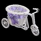 WEIWEITOE Dormitorio de la Oficina de plástico como Regalo del riciclo Triciclo en Bicicleta Cesta de Flores en el jardín Decoración para el Banquete de Boda Mini Carrito de Servicios, púrpura