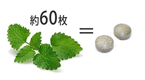 ウェルネス レモンバーム (300mg×60粒入)