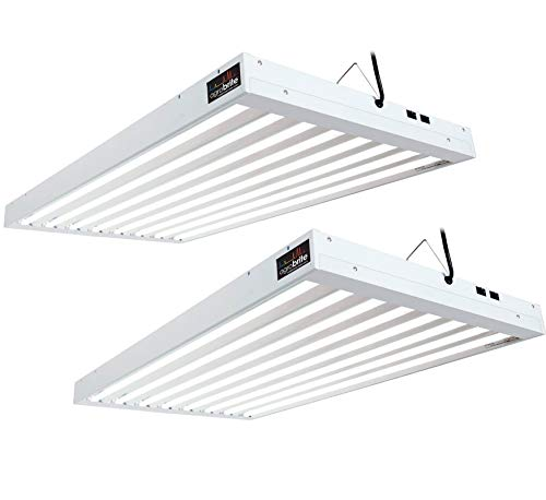 Hydrofarm FLT48 Agrobrite 8-Tube Daisy Chainable Hydroponic 4-Foot Grow Light Fixture 432W with 8-T5 Bulbs for Indoor Home Gardens (2 Pack)