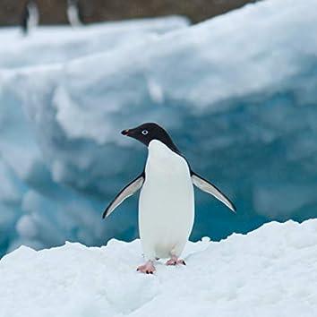ジェットペンギン3号