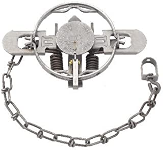1/2 Dozen (6 PAK) Duke 1 1/2 Coil Spring Double Jaw Trap for Raccoon, Nutria, Fox, and Mink by Duke