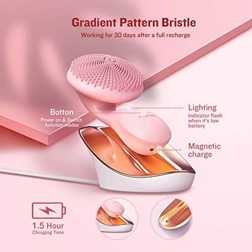 Caytraill Silicone Facial Brush
