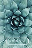 Journal: Close up of a gorgeous succulent plant. . This notebook/Dairy will be a joy to write in or draw in. Lovely gift for women, teachers, gardeners and house plant keepers.