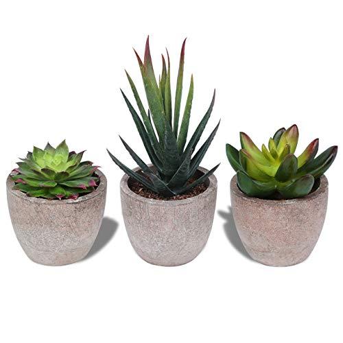 HAUSPROFI Lot de 3 Petite Plante Artificielle Décoration Extérieur Intérieur Succulentes Plantes Grasses en Pot pour Bureau, Balcon, Salon, Maison