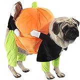 mama stadt Haustier Kürbis-Kostüm Hundekostüm, das Kürbis Puppen Haustier Katzen Hund Kostüme...