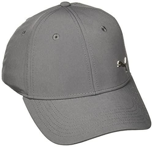 PUMA Men's Stretch Fit Cap, Gray/Silver, Large/X-Large
