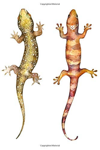 Notebook: for gecko and lizard lovers, yellow and orange